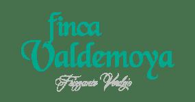 Finca Valdemoya Frizzante Verdejo