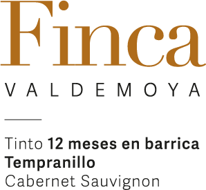 Finca Valdemoya Tinto 12 Meses en Barrica